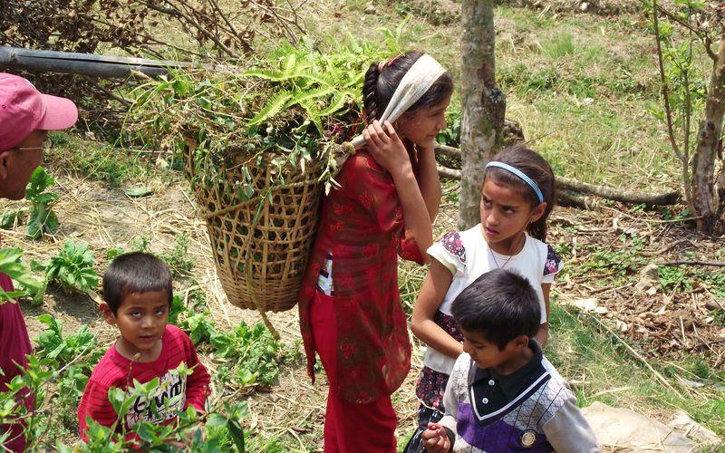 Nepal new camera 342